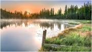 Miesebodensee Sonnenaufgang 8968
