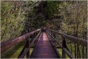 Brücke Salza Stausee 9687