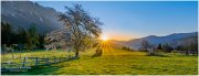 Sonnenaufgang Prenten 20_D810070-H_04_24