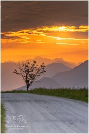 Sonnenaufgang Mitterberg 20_R2B2048_05_19