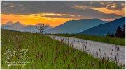 Mitterberg Sonnenaufgang 20_D810296_05_19