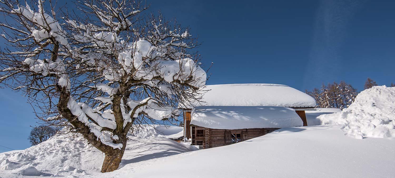 Winter, Schnee, Urlaub, Pruggererberg